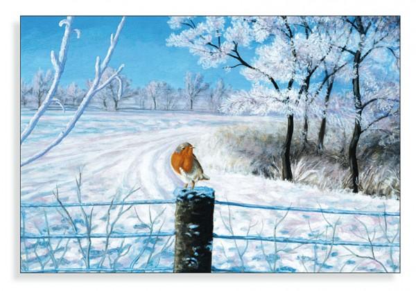 Winterlichte Landschaft