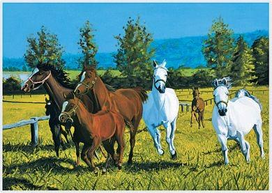 """Puzzle """"Pferde"""""""